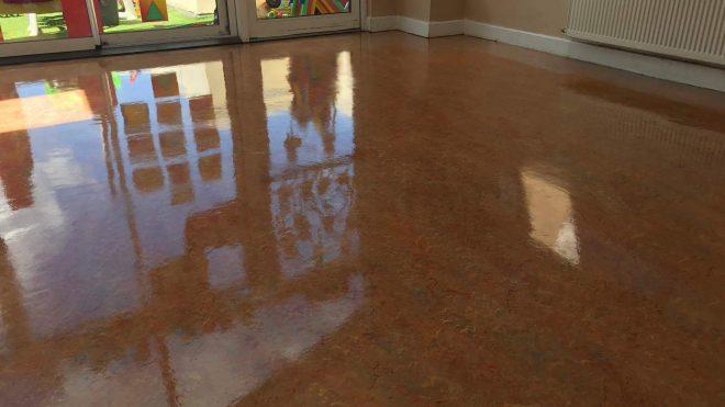 Floor Cleaning Clonsilla